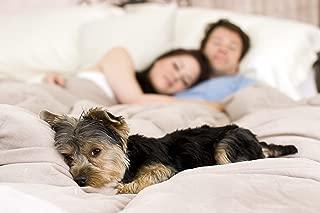Floppy Ears Design Waterproof Breathable Top OR Bottom of Duvet Comforter Cover Protector (King)