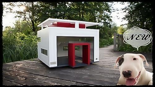 Dog House Design New
