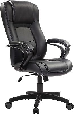 Eurotech Seating Pembroke Executive Chair, Black
