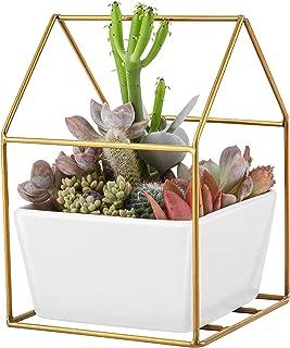 Fieren Indoor Planter Pots,Succulent Pots,Small Flower Pot,Indoor Plant Stand for 4.5
