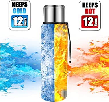 Insulated Thermo Bottle 25oz with cup Leakproof stainless water flask for coffee tea hot and cold drink.(Silver,750ml)