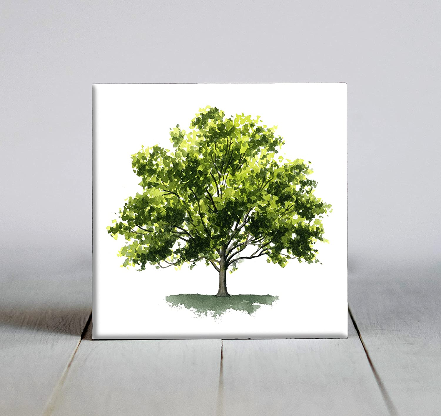 Genuine Free Shipping Sycamore Tree Watercolor Art Decorative Framed Tile El Paso Mall X 4.25