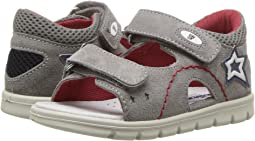 Falcotto 1627 SS18 (Toddler)