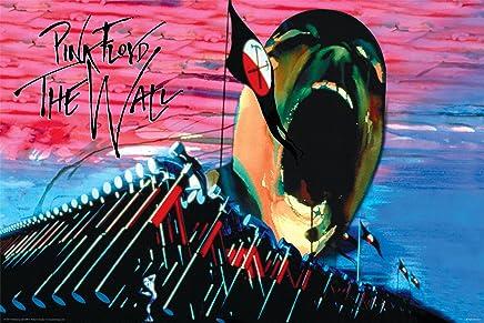 Studio B Rosa Floyd-The wall-hammers e viso