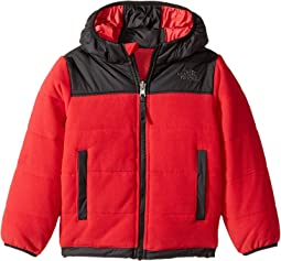 Reversible True Or False Jacket (Toddler)