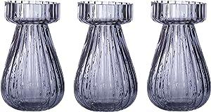 Set di vaso Giacinto vaso di vetro 3 di vetro 14 cm giacinti tavolo vaso decorativo Vaso di vetro tè leggero candele lanterna di vetro (Set di 3 grigio)