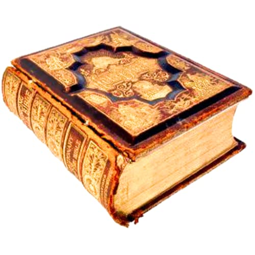 Versículos bíblicos diários
