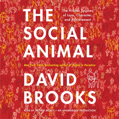 The Social Animal Audiobook By David Brooks cover art