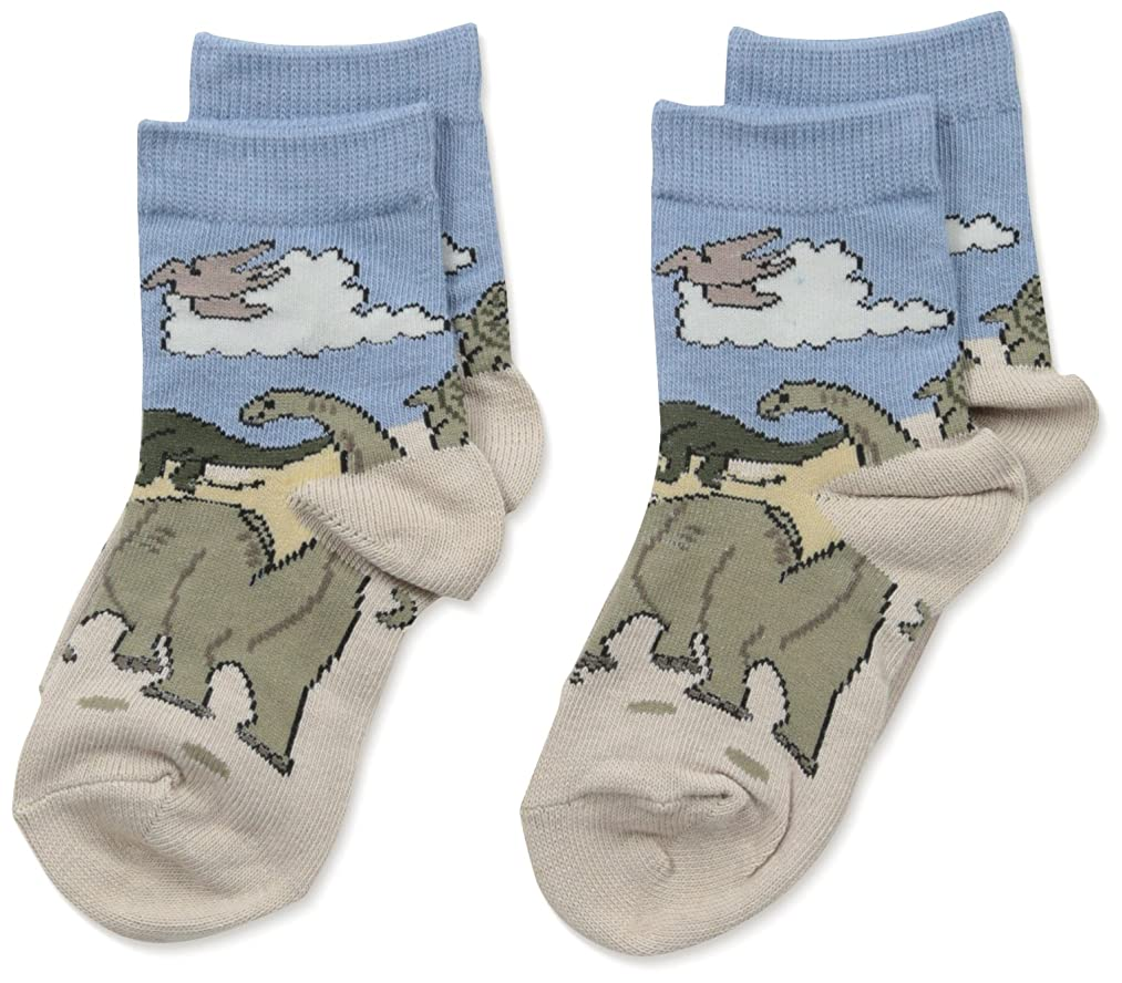 Country Kids Little Boys' Triassic Dino Mix 2 Pair