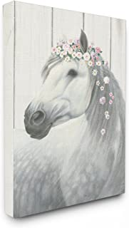 Best horse and pictures Reviews
