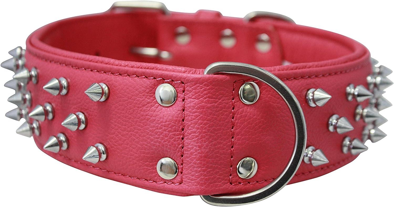 Angel Amsterdam Collar, 26  x 2 , Hot Pink