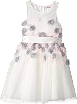 Mesh Dress with 3-D Roses (Little Kids/Big Kids)