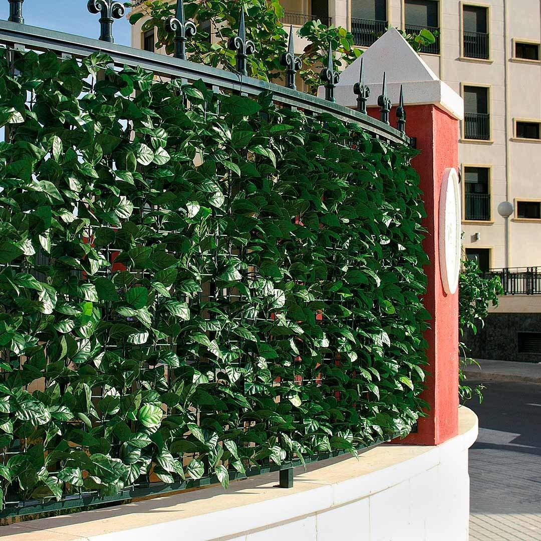 Catral 43020012 Seto Artificial Hedra, Verde, 300 x 3 x 100 cm: Amazon.es: Jardín