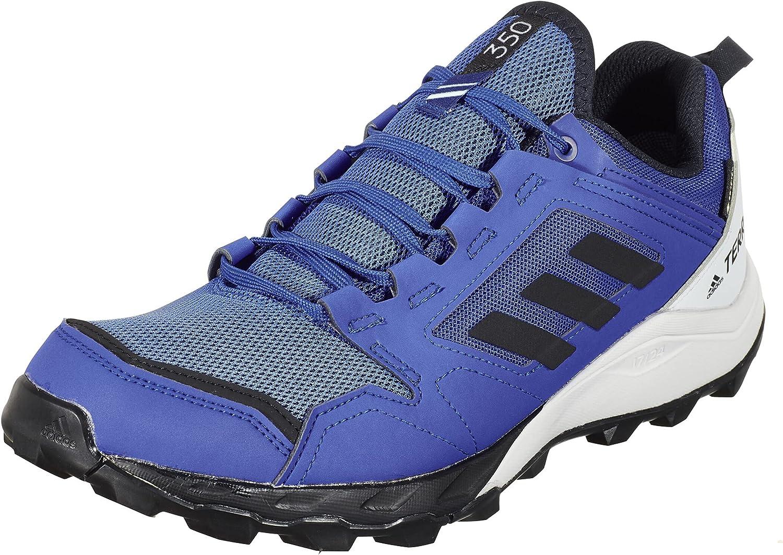 adidas Terrex Agravic TR GTX, Zapatillas de Trail Running Hombre
