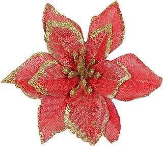 Amazon.es: Flores Para Navidad