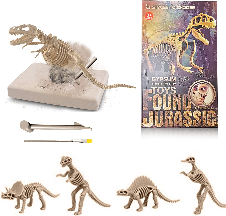 Buddy N Buddies Dinosaur Kits Excavation Bones supreme Fossil Ranking TOP1