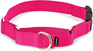 Best buckle martingale collar Reviews
