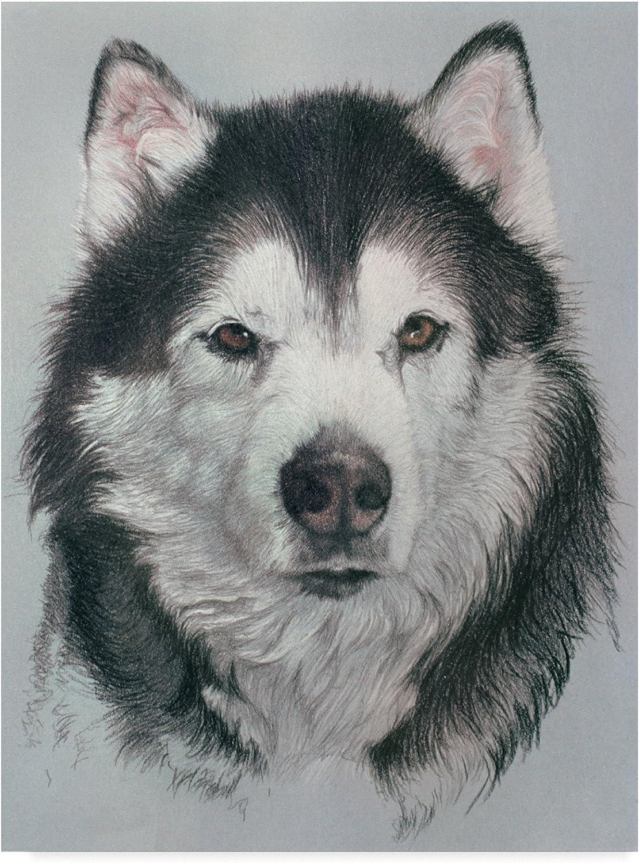 Husky Dog by Rusty Frentner, 14x19Inch