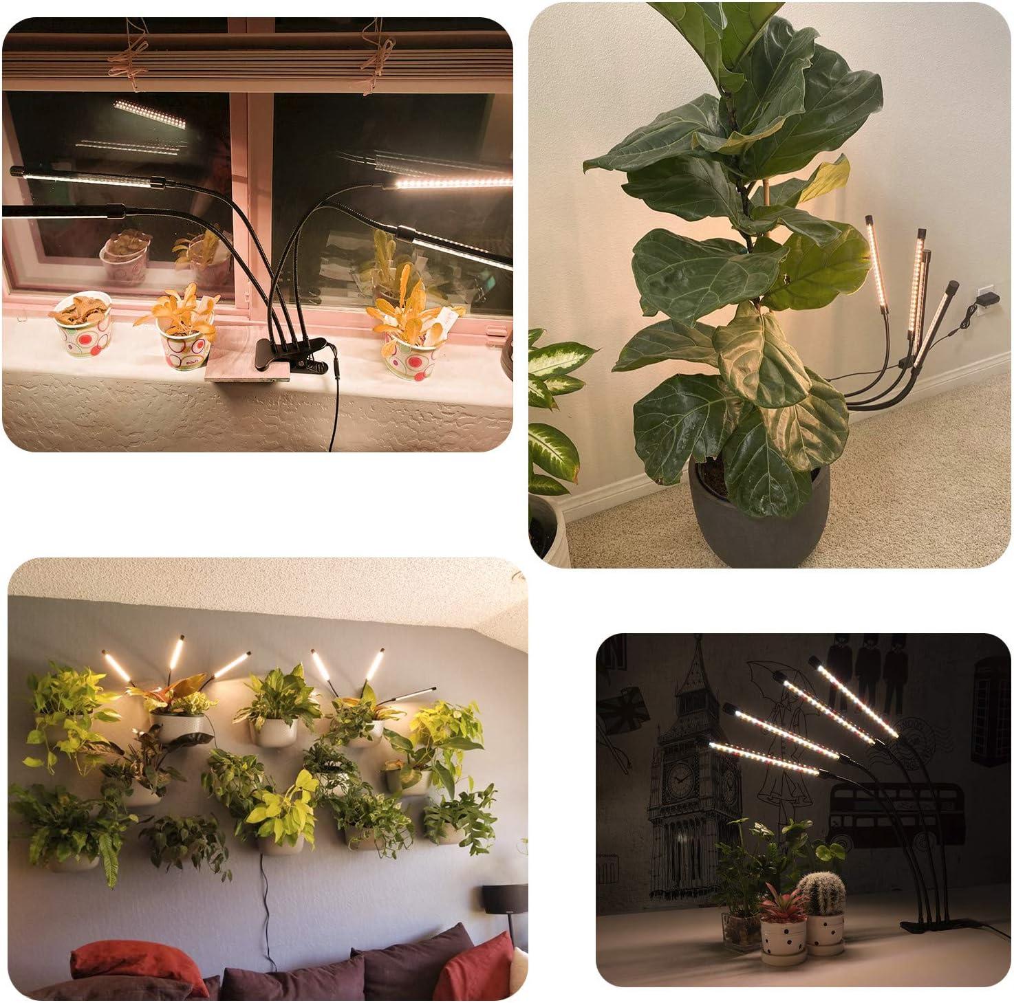 Garpsen L/ámpara Cultivo Interior L/ámpara de Crecimiento de 4 Cabezas con Temporizador para Semillas Jardiner/ía Bonsai 660nm//3000K//5000K 80 LEDs Espectro Completo Led L/ámpara de Plantas