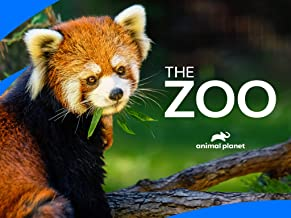 The Zoo Season 4