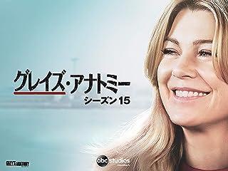 グレイズ・アナトミー シーズン15 (字幕版)