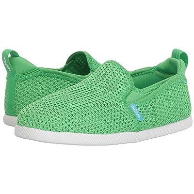 Native Kids Shoes Cruz (Little Kid) (Grasshopper Green/Shell White) Kids Shoes