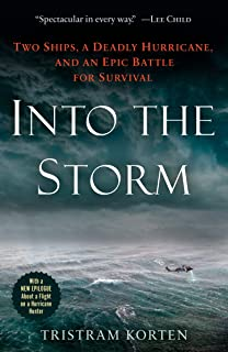 into the storm free online