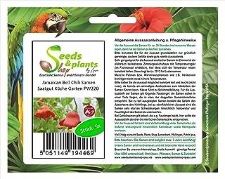 Stk - 5x Jamaican Bell Chili Samen Saatgut Küche Garten PW220 - Seeds Plants Shop Samenbank Pfullingen Patrik Ipsa