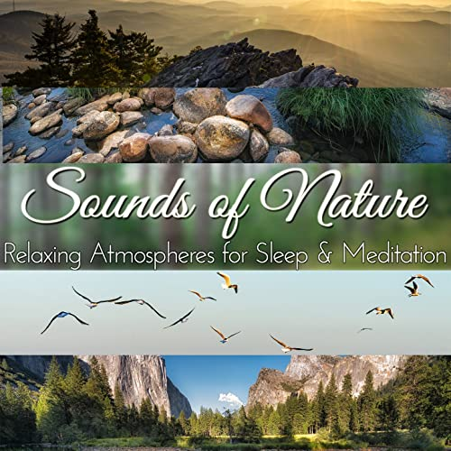 Gentle Wind Blowing in a Canyon by Audio Decor Sound Effects