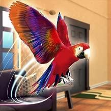 Pet Vet Parrot Simulator