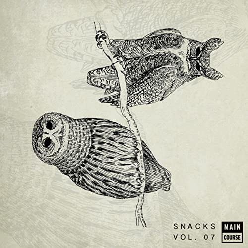 Main Course presents Snacks: Volume 7