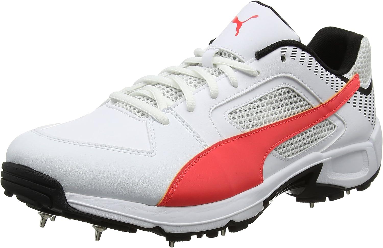 Puma Men's Team Full Spike Cricket shoes