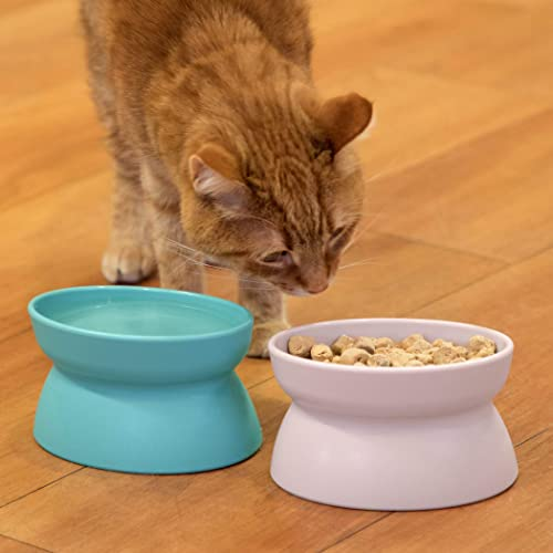 Kitty City CM-10065-CS01 Raised Cat Food Bowl Collection, Stress Free Pet Feeder and Waterer Teal and Pink