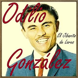 Best el jibarito de lares Reviews