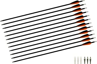 TTAD 28-Inch Carbon Arrows Archery Hunting Practice Targeting Arrows 100 Grain Replaceable Field Points Tips (12 Pack)