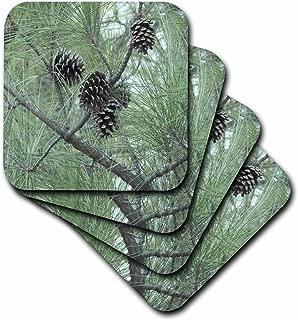 3dRose CST_23812_3 Pine Cones Ceramic Tile Coasters, (Set of 4)