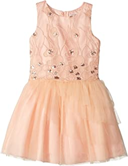 Sequins Embroidered Mesh Dress with Layered Tulle (Little Kids/Big Kids)