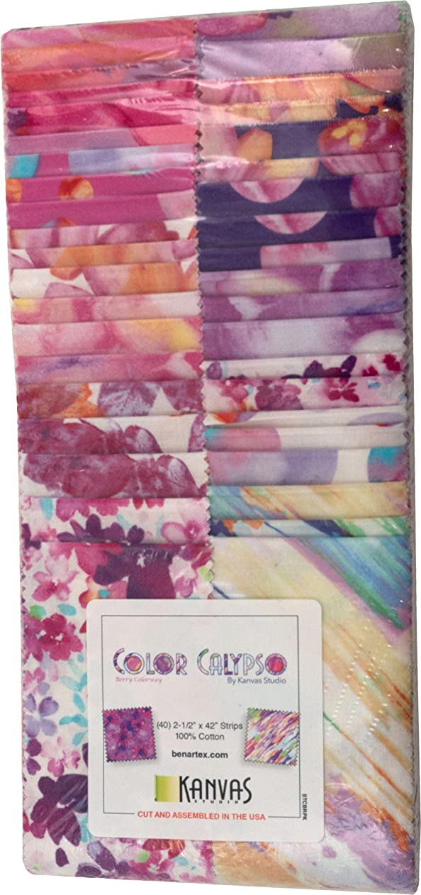 Benartex Kanvas Studio Color Calypso Berry Strip-Pies 40 2.5-inch Strips Jelly Roll, Assorted vbymbyvwpza86138