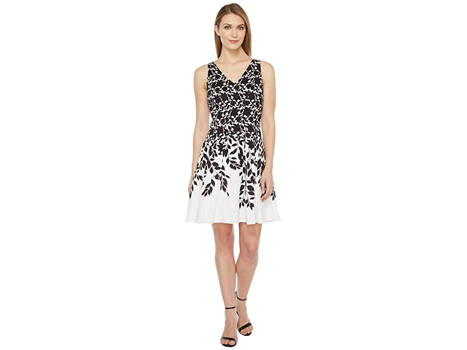 Maggy London Lace Leaf Border Fit and Flare Dress (Soft White/Black) Women