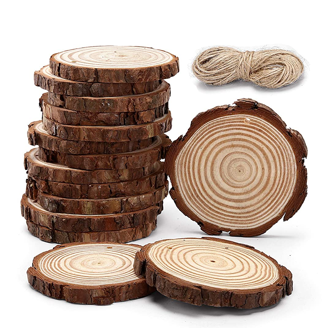 15pcs Hanging Natural Wood Slices Round Unfinished for centerpieces with Holes bark for Christmas Decorations Ornaments Unfinished Wood Woodcrafts DIY Crafts M-15pcs