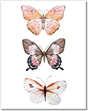 butterfly watercolor prints