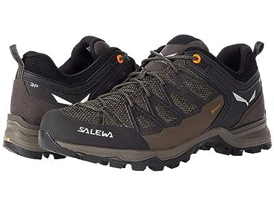 SALEWA Mountain Trainer Lite GTX