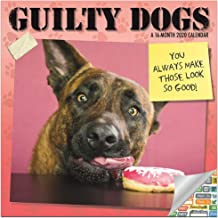 Guilty Dog Calendar 2020 Set - Deluxe 2020 Funny Dog Wall Calendar with Over 100 Calendar Stickers (Funny Calendar for Dog Lovers)