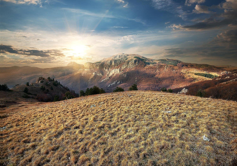 Wandmotiv24 Fototapete Landschaft Wiese in den Bergen M0691 M0691 M0691 XXL 400 x 280 cm - 8 Teile Wandbild - Motivtapete B0711QD7LP 5894b4