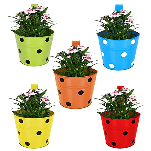 TrustBasket Single Pot Railing Planter (Multicolour, Pack of 5)