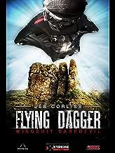 Best flying daggers movie Reviews