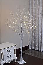 LIGHTSHARE LED Lighted Birch Tree, 6 Feet, Warm White