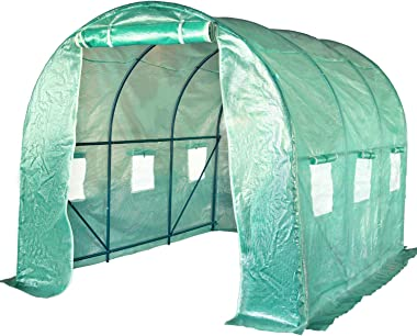 FDW Greenhouse for Outdoors Greenhouse Walk-in Green House L9.8'xW6.5'xH6.5' Plastic Mini Greenhouse Kit Indoor Portable Greenhouse Plant Shelves Tomato Herb Canopy for Patio