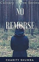 No Remorse (Calvary Haven Mysteries Book 2)