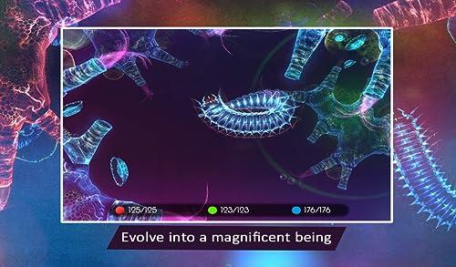 『Sparkle 2 Evo』の3枚目の画像